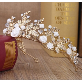Wholesale Hair accessories F10119