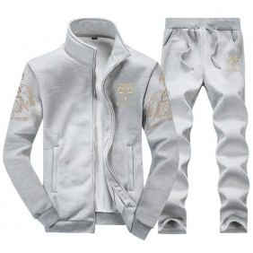 Wholesale Fashion man\'s tracksuit  T10527 Gray