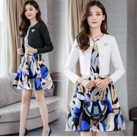 Wholesale Fahsion 2-piece set dress B3559