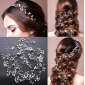 Wholesale Hair accessories F10134